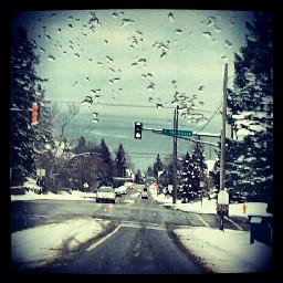colddays mn winter gdmytown