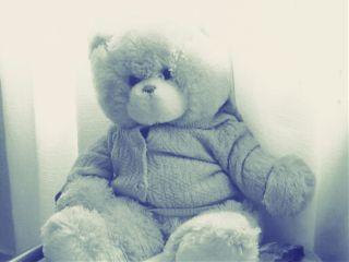 photography retro vintage teddy bear wapvintage wapoldtoys