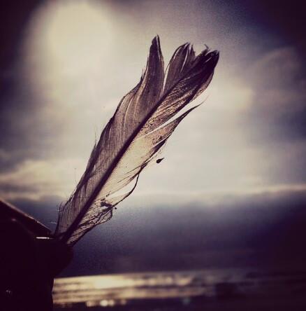 Feathers on the beachhhhhhhhhhhhh:D