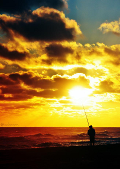 photography nature sun summer beach argentina