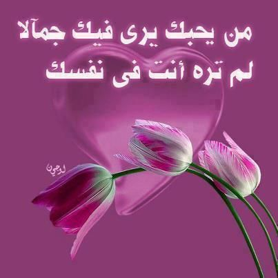 دانلود اغنیه یمه الحب یما أقوال الحب تهزالقلوب واتس اب screenshot 7.